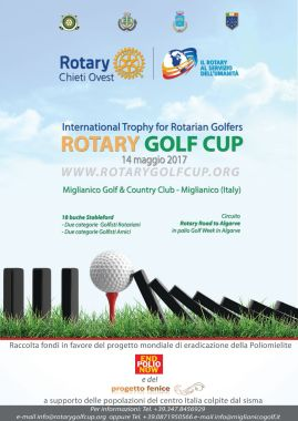 3 rotary golf cup